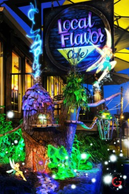 Are Fairies Real at Local Flavor Cafe, Light Painting Photography from Public Art Project Electric Vision - Eureka Springs, Arkansas