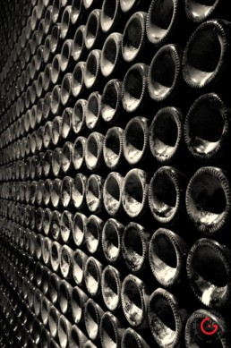 Ca Del Bosco Photography of Wine - Italy