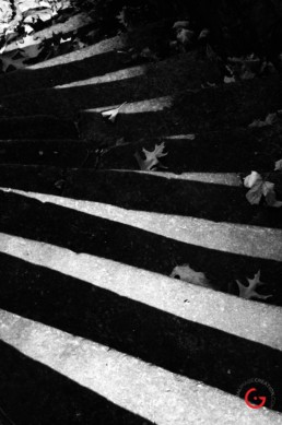 The Stairs at Sweet Spring - Eureka Springs, Arkansas Photography