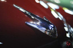 Packard Hood Emblem - Classic Cars Professional Car Photographer, Automotive Photography
