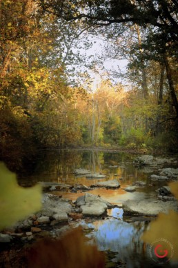 A creek flows thru the fall colors of the Ozarks. - Advertising photographers in Branson Missouri, Branson Missouri photography
