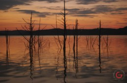 Sunset on the calm water of table rock lake. Silhouettes of old trees and Ozark mountains off in the distance. - Advertising photographers in Branson Missouri, Branson Missouri photography