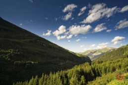 Swiss Alps in Summer - Travel Photographer and Switzerland Photography