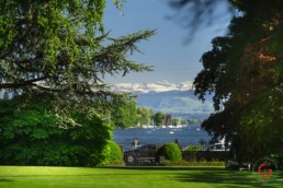 The Park of the Baur au Lac with Lake Zurich in the Background - Travel Photographer and Switzerland Photography